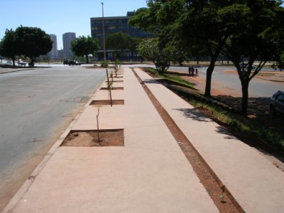 revitalização de calçada - SCS
